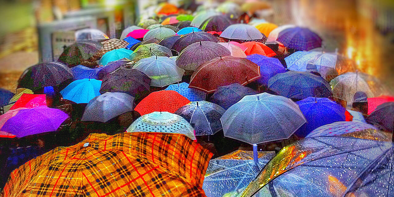 Crowded street of open umbrellas.