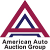 American Auto Auction Group