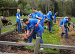 Baird Gives Back Week 2016